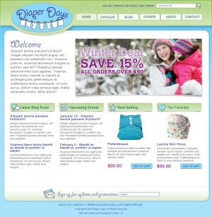 diaper days e-commerce website